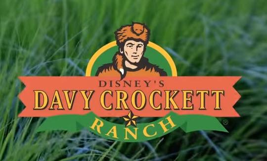 Disney Davy crocket